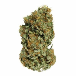 Sour Diesel Feminized Seeds for sale from Seedsman by Royal Queen Seeds